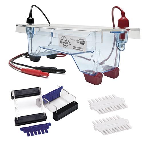 Elektroforeesi